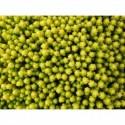 rozchodnik mieszańcowy Yellow Xenox®  - doniczka 2,0 l